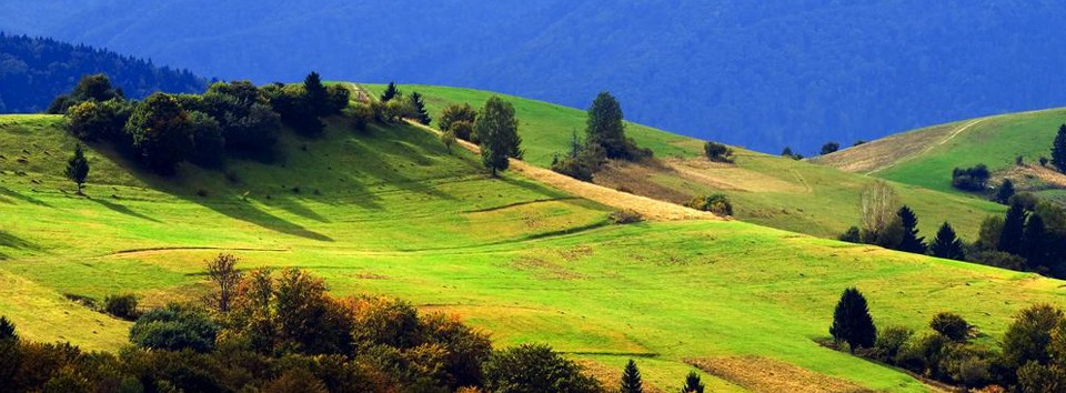 carpathians_ukraine_travel