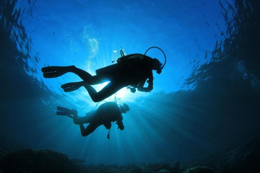 12 лучших мест для дайвинга в Красном море