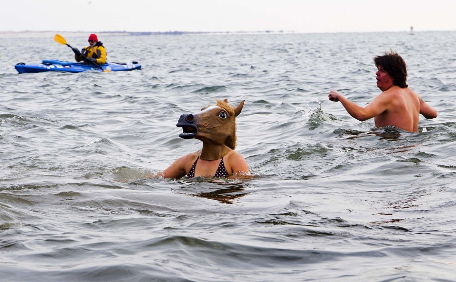 horse_in_water